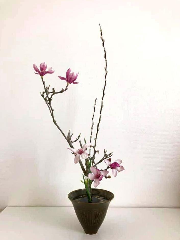 Catherine Cohen : Ikebana Shimputai